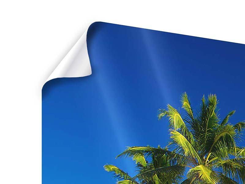 Poster 4-teilig modern Aloha