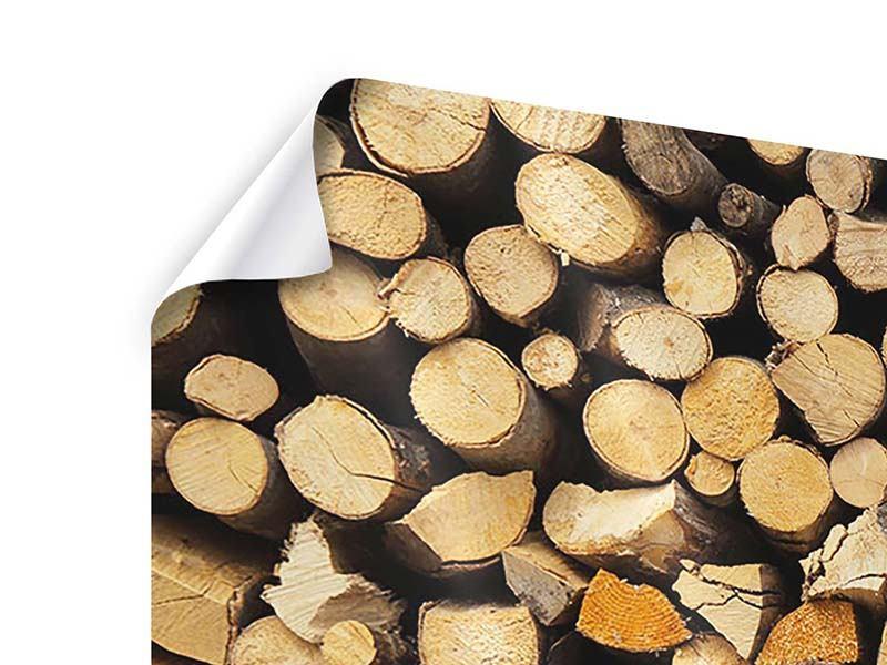 Poster 4-teilig modern Brennholz