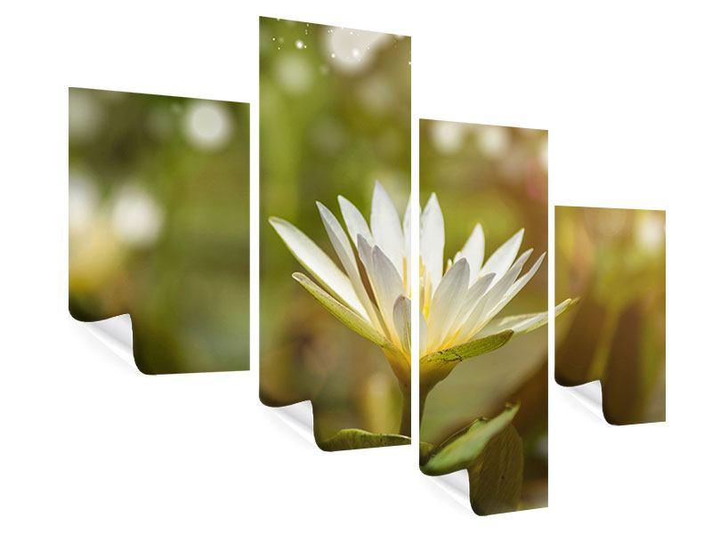 Poster 4-teilig modern Lilien-Lichtspiel