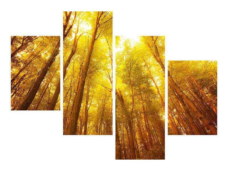Poster 4-teilig modern Herbstwald