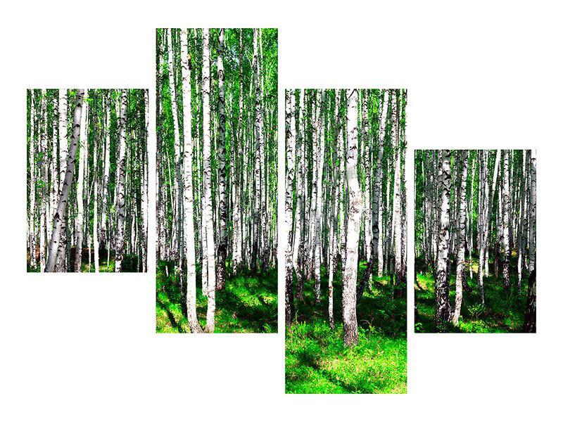 Poster 4-teilig modern Sommerlicher Birkenwald