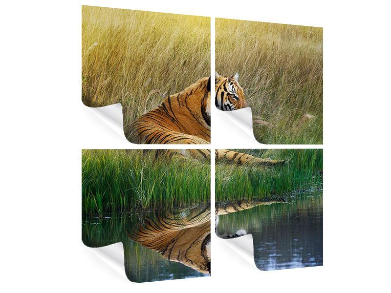 Poster 4-teilig Der Tiger