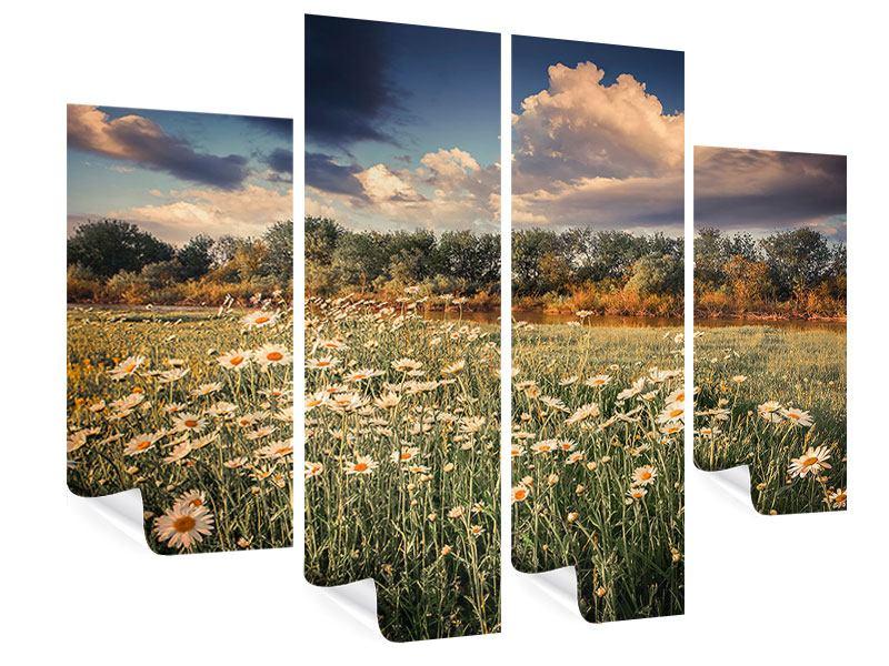 Poster 4-teilig Die Wiesenmargerite am Fluss