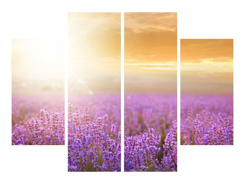Poster 4-teilig Sonnenuntergang beim Lavendelfeld