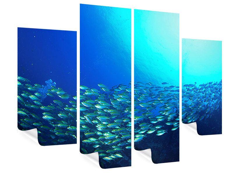 Poster 4-teilig Fischschwarm