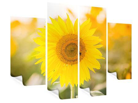 Poster 4-teilig Sunflower