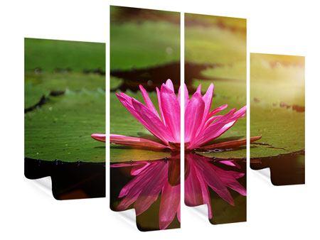 Poster 4-teilig Lotus im Wasser