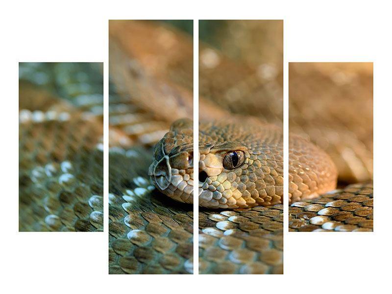 Poster 4-teilig Viper
