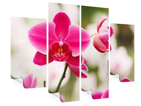 Poster 4-teilig Perspektivische Orchideen