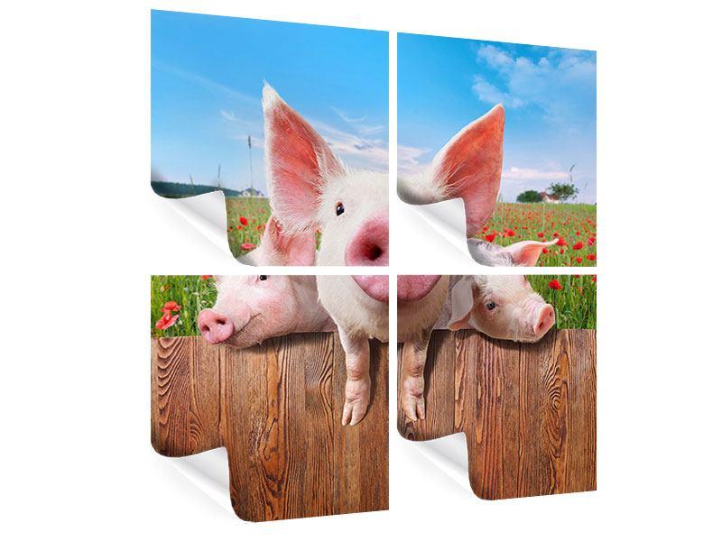 Poster 4-teilig Schweinchen im Glück