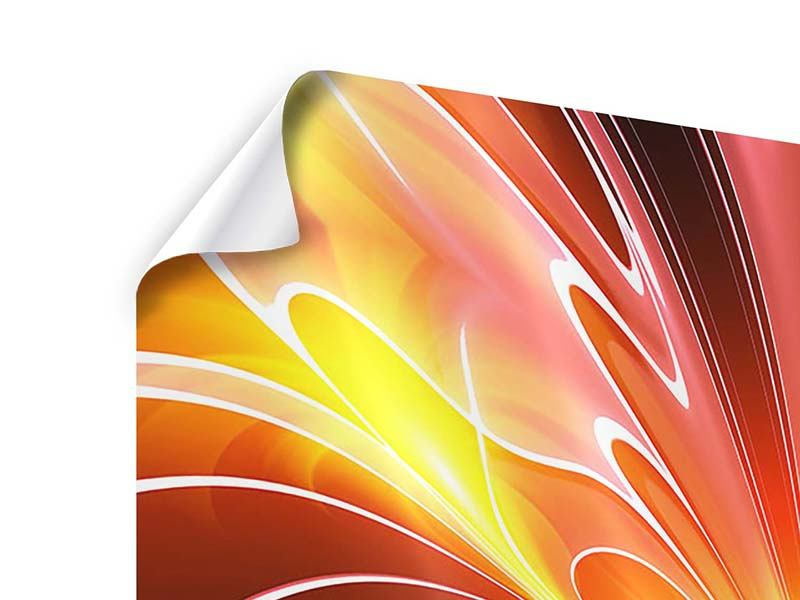 Poster 4-teilig Abstraktes Farbenspektakel