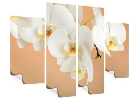 Poster 4-teilig Weisse Orchideenblüten