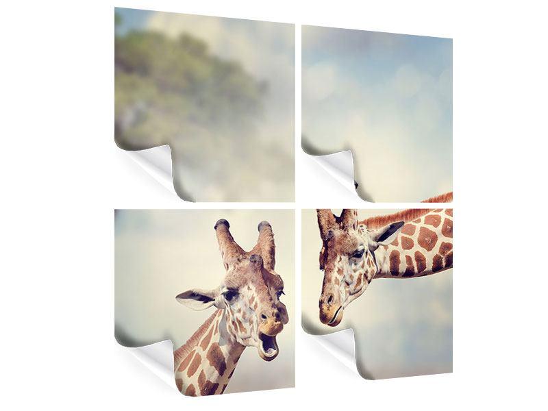 Poster 4-teilig Giraffen