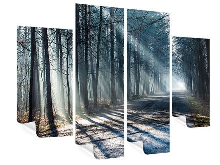 Poster 4-teilig Wald im Lichtstrahl
