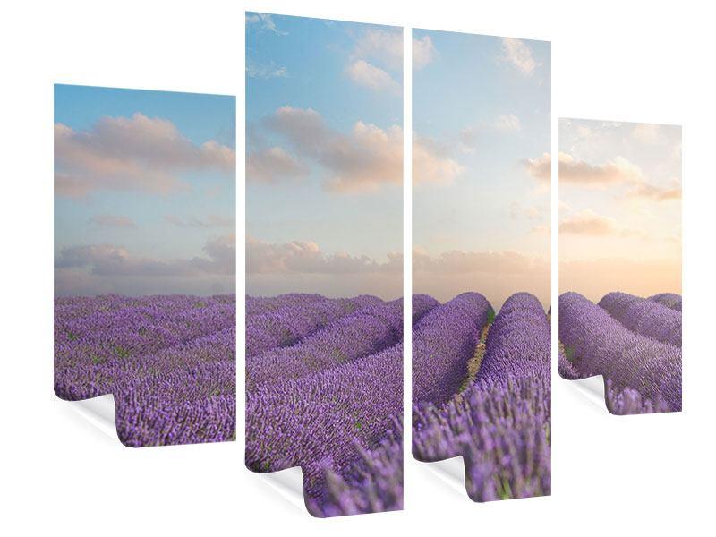 Poster 4-teilig Das blühende Lavendelfeld