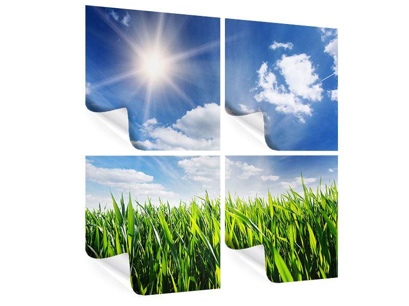 Poster 4-teilig Frühlingsgras