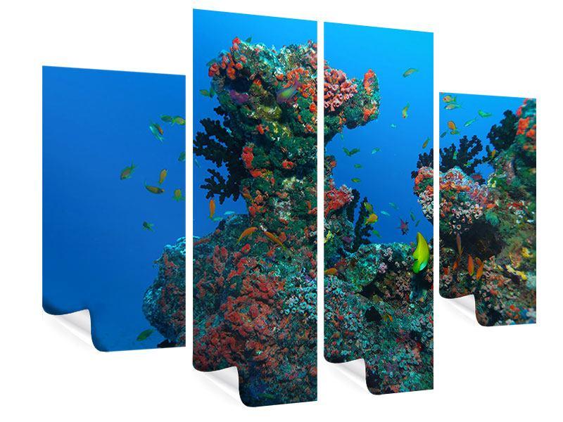 Poster 4-teilig Die Welt der Fische