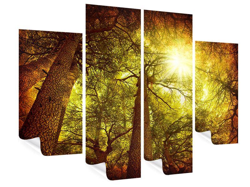 Poster 4-teilig Cedar Baum
