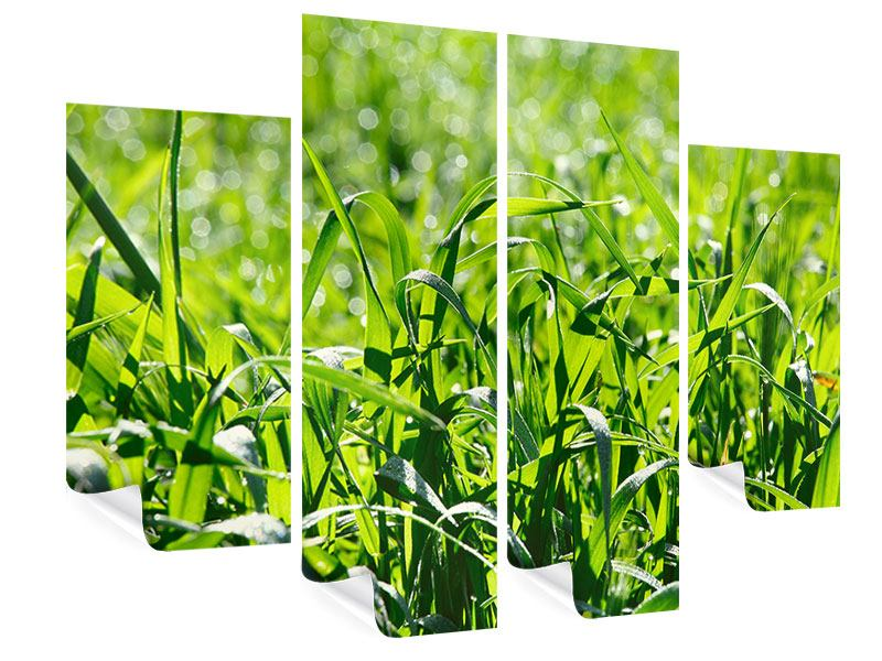 Poster 4-teilig Sonniges Gras