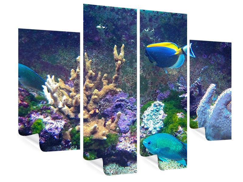 Poster 4-teilig Fische