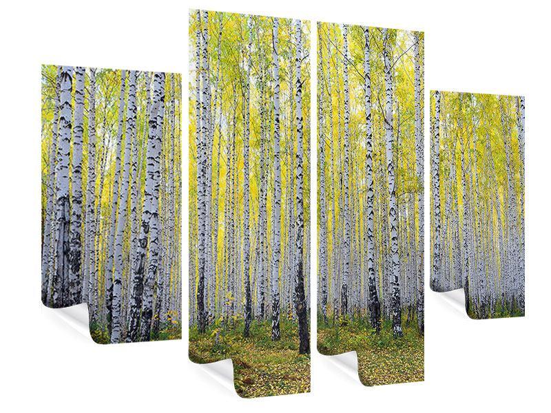 Poster 4-teilig Herbstlicher Birkenwald