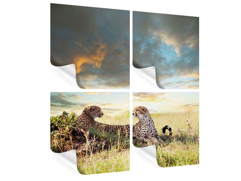 Poster 4-teilig Geparden