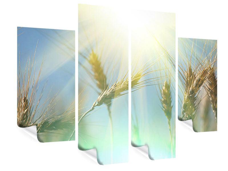 Poster 4-teilig König des Getreides