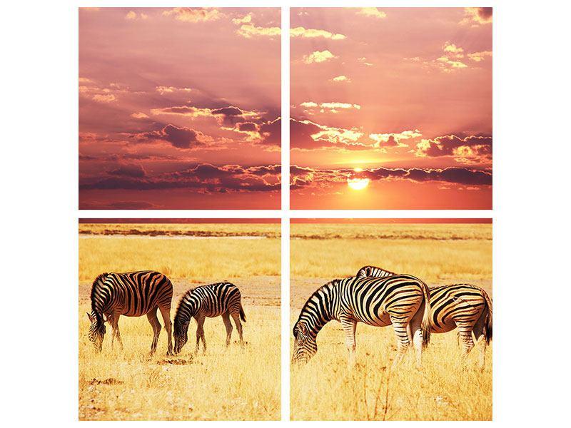 Poster 4-teilig Zebras in der Savanne