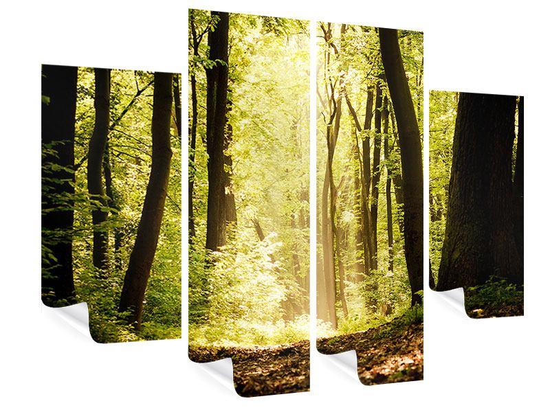 Poster 4-teilig Sonnenaufgang im Wald
