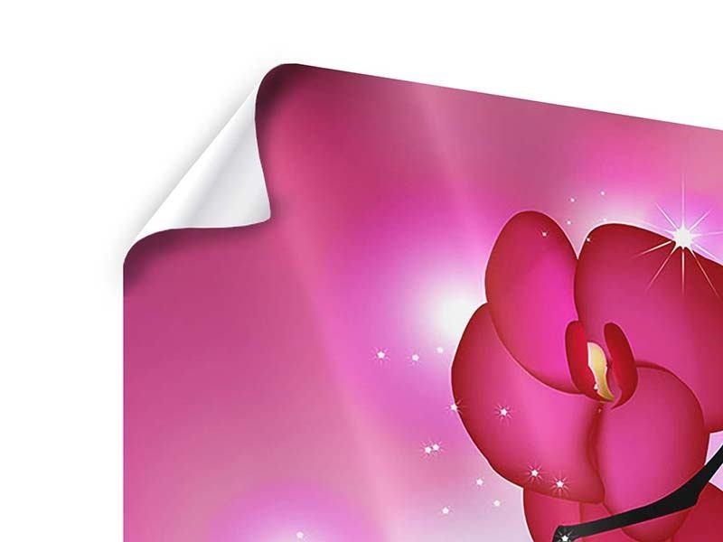 Poster 4-teilig Orchideenmärchen