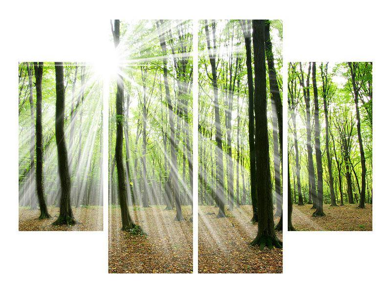Poster 4-teilig Magisches Licht in den Bäumen