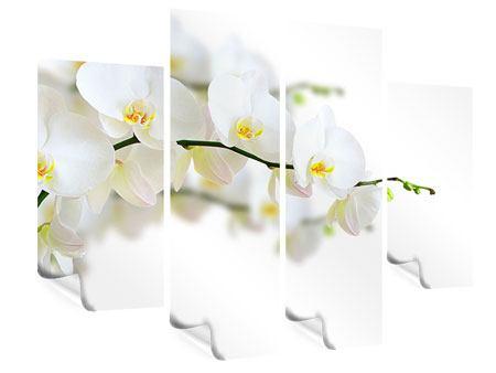 Poster 4-teilig Weisse Orchideen