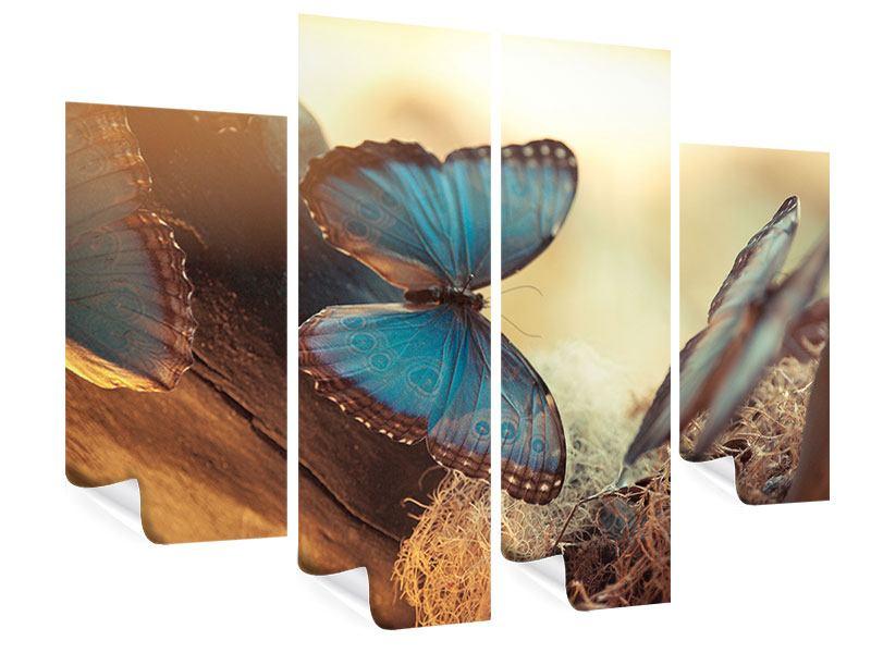 Poster 4-teilig Schmetterlinge