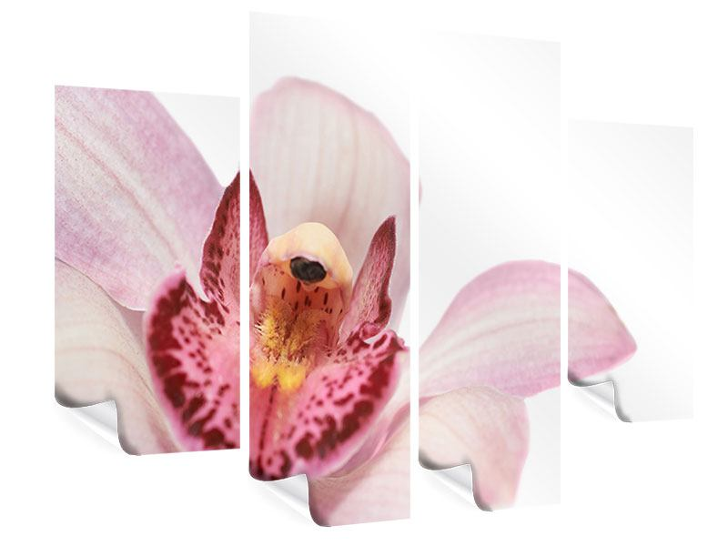 Poster 4-teilig Orchideenblüte XXL