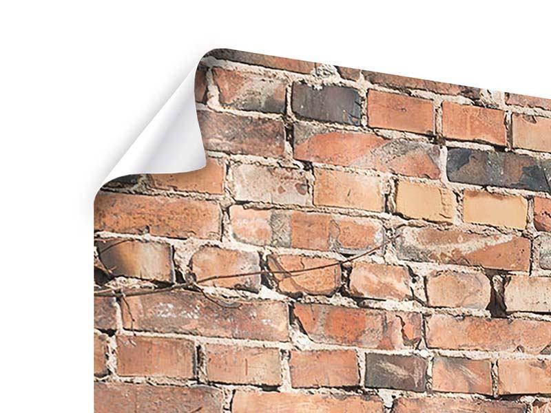 Poster 4-teilig Alte Backsteinmauer