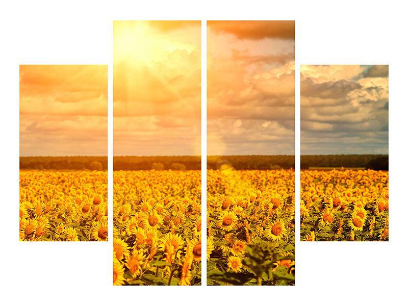 Poster 4-teilig Goldenes Licht für Sonnenblumen