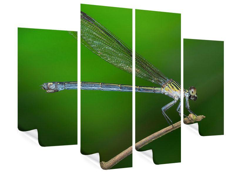 Poster 4-teilig Die Libelle