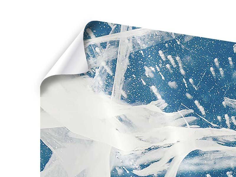 Poster 4-teilig Eiskristalle