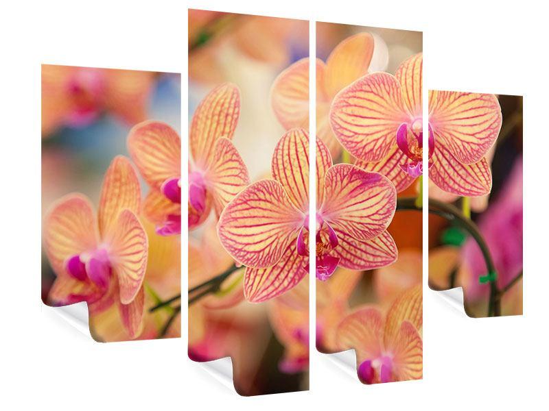Poster 4-teilig Exotische Orchideen
