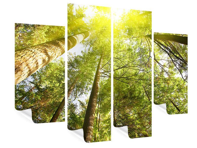 Poster 4-teilig Baumkronen in der Sonne