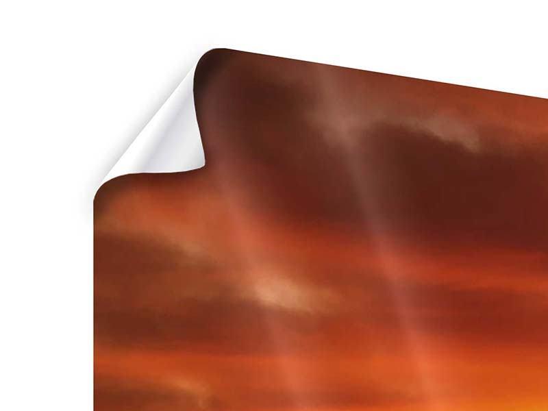 Poster 4-teilig Der Weinberg bei Sonnenuntergang