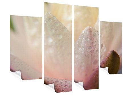 Poster 4-teilig Close Up Seerose