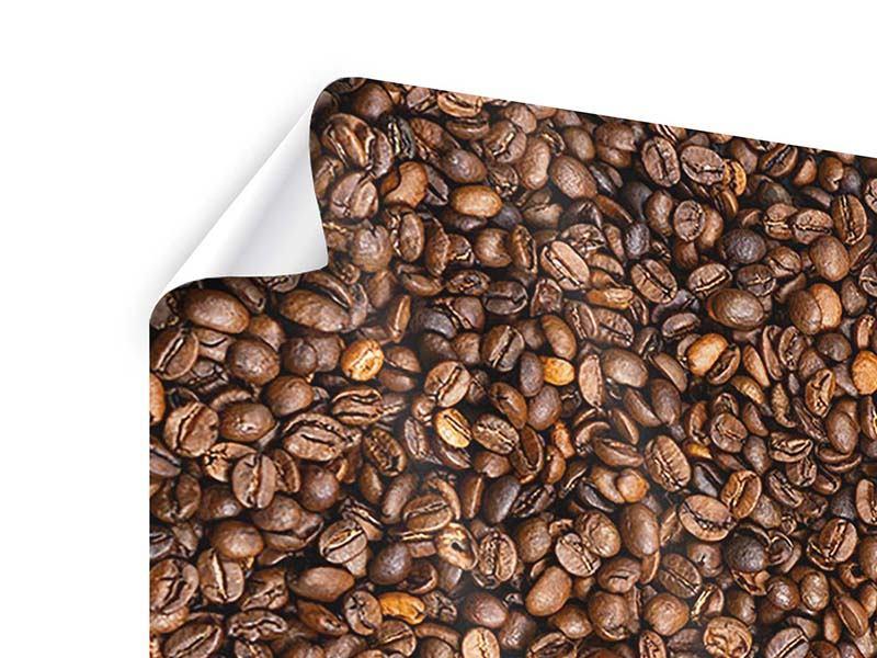Poster 4-teilig Kaffeebohnen