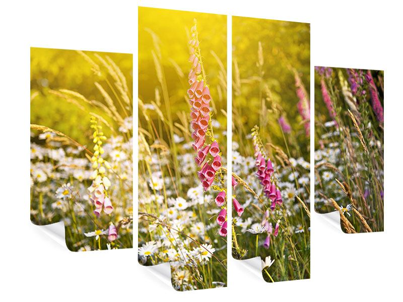 Poster 4-teilig Sommerliche Blumenwiese