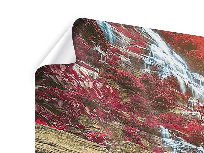 Poster 4-teilig Exotischer Wasserfall