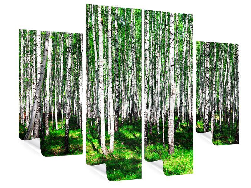 Poster 4-teilig Sommerlicher Birkenwald