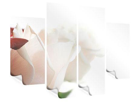 Poster 4-teilig Herrliche Rosen