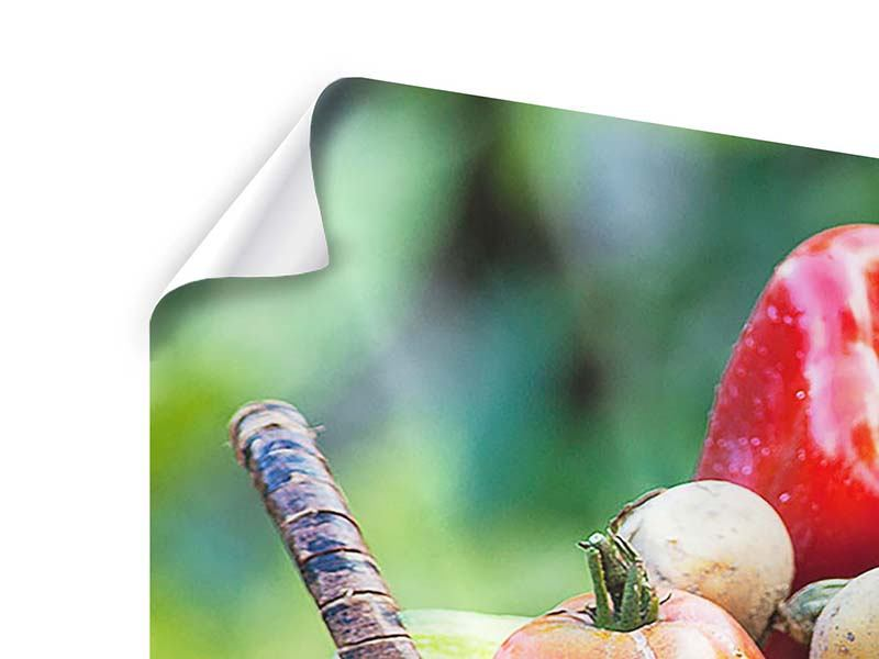 Poster 4-teilig Gemüsekorb