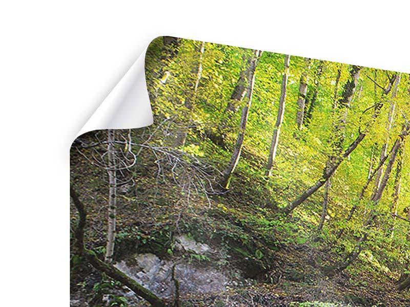 Poster 4-teilig Fliessender Wasserfall