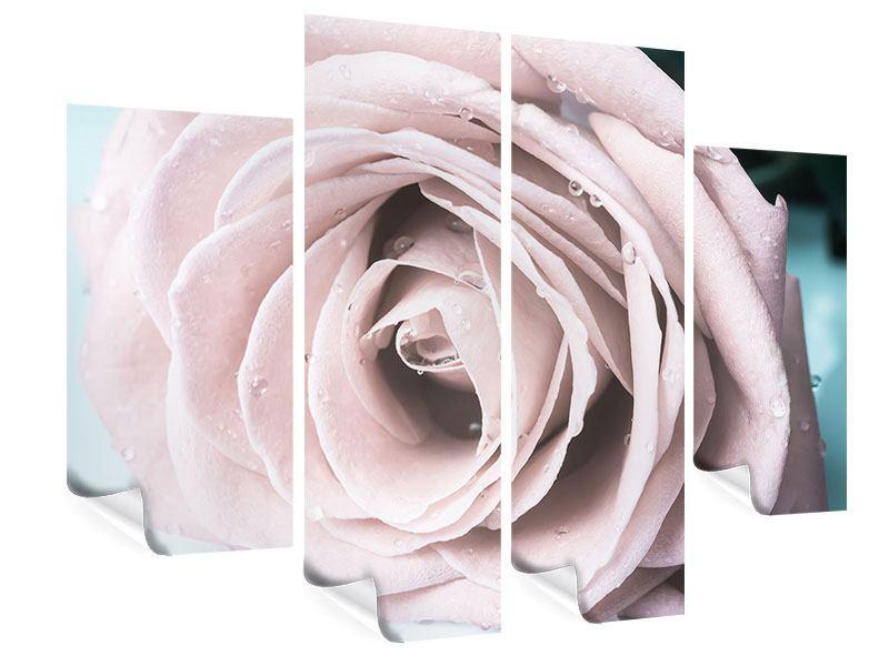 Poster 4-teilig Pastellrose